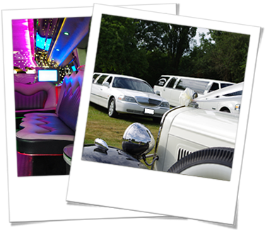 Limousines and wedding cars