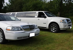 White limousines lined up